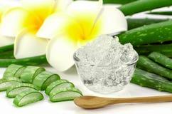 Il gel puro di Vera dell'aloe su aloe vera va e fondo di plumeria Fotografia Stock