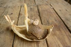 Il gelato esotico del pinole dal Messico, un cereale azteco ha basato il gelato fatto bevanda in un mercato locale fotografia stock libera da diritti