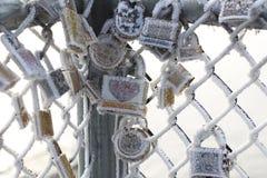 Il gelo ha coperto le serrature di amore Immagine Stock Libera da Diritti