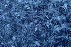 Il gelo sul vetro Fotografie Stock Libere da Diritti