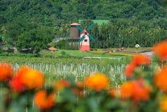 Il generatore eolico e la vigna con il fiore arancio offuscano la priorità alta fotografia stock libera da diritti