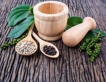 Il genere di pepe bianco del pepe, di pepe nero e di peperone verde w Fotografia Stock