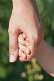 Il genitore che tiene la mano di un bambino Fotografie Stock