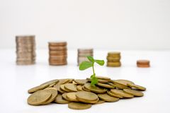 Il germoglio che cresce sulle monete di oro del mucchio con le monete vaghe diminuisce Fotografia Stock Libera da Diritti