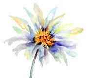 Il germoglio del fiore Fotografie Stock Libere da Diritti