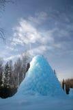 Il geyser congelato nel legno Immagini Stock