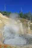 Il geyser nero del drago del parco nazionale di Yellowstone Immagini Stock