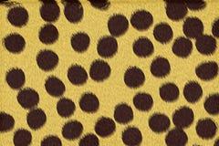 Il ghepardo macchia la priorità bassa Fotografie Stock Libere da Diritti