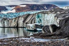 Il ghiacciaio il Serp-i-Molot in una baia riguarda Novaya Zemlya Immagini Stock