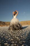 Il ghiaccio del vestito convenzionale dalla donna passa le spese generali Immagini Stock