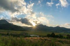 Il giacimento del riso ed il tramonto Immagini Stock Libere da Diritti
