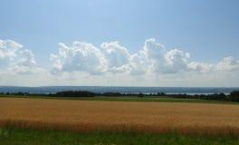 Il giacimento di grano trascura Seneca Lake e le nuvole di tempesta al di sopra Fotografia Stock