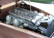 Il giaguaro d'annata xk120 mette in mostra il motore Immagine Stock