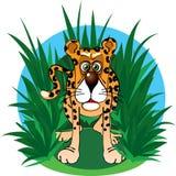 Il giaguaro divertente del carattere nella giungla Fotografie Stock