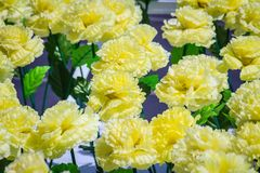 Il giallo artificiale fiorisce la decorazione per la celebrazione del nuovo anno e di notte di Natale Immagini Stock Libere da Diritti