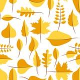 Il giallo di autunno ha appassito il modello senza cuciture delle foglie Immagini Stock Libere da Diritti