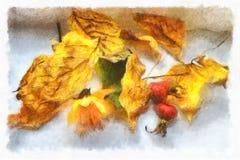 Il giallo di autunno va, bacche rosa selvatiche rosse Dell'acquerello vita ancora Fotografia Stock