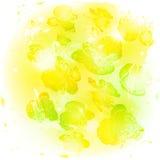 Il giallo stilizzato dell'acquerello fiorisce il fondo Immagini Stock Libere da Diritti