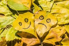 Il giallo va con un'immagine dei fronti felici e tristi Fotografie Stock