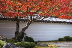 Il Giappone in autunno Immagini Stock