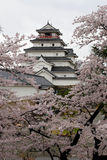 Il Giappone: Castello di Tsurugajo in primavera Fotografia Stock Libera da Diritti