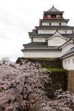 Il Giappone: Castello di Tsurugajo in primavera Immagine Stock Libera da Diritti
