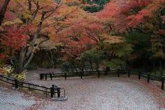 Il Giappone Kiyomizudera Fotografie Stock Libere da Diritti