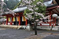Il Giappone piovoso fotografie stock