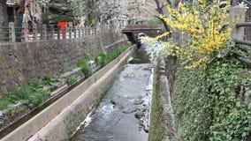 Il Giappone - Takayama video d archivio