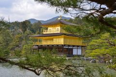 Il Giappone viaggio Kinkakuji padiglione aprile 2018 dorato fotografia stock