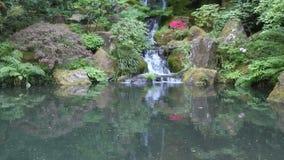 Il giapponese fa il giardinaggio Portland stock footage
