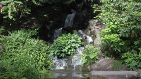 Il giapponese fa il giardinaggio Portland video d archivio