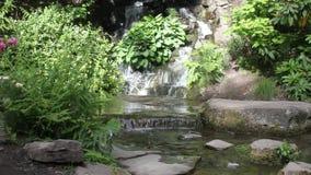 Il giapponese fa il giardinaggio Portland archivi video
