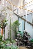 Il giardinaggio in una casa Immagini Stock