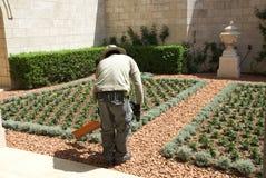 Il giardiniere Fotografia Stock Libera da Diritti