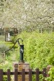 Il giardino Immagini Stock Libere da Diritti