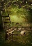 Il giardino abbandonato Immagini Stock Libere da Diritti