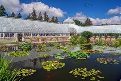Il giardino botanico di New York immagini stock