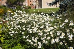 Il giardino del castello di Wawel a Cracovia dal fiume la Vistola, il castello reale di Wawel è La Mecca per i turisti che visita Immagine Stock Libera da Diritti