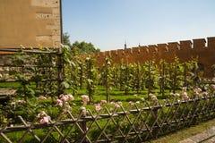 Il giardino del castello reale di Wawel e cattedrale a Cracovia Polonia Fotografia Stock Libera da Diritti