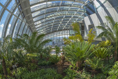 Il giardino del cielo, via di 20 Fenchurch, Londra, Regno Unito Immagine Stock Libera da Diritti