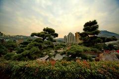 Giardino di Nan Lian a Hong Kong fotografie stock libere da diritti