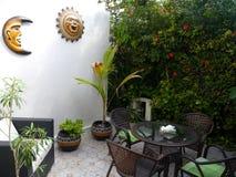 Il giardino di ora legale fiorisce la vita domestica delle piante della decorazione Fotografie Stock Libere da Diritti