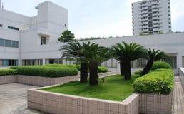 Il giardino di tetto Fotografia Stock Libera da Diritti