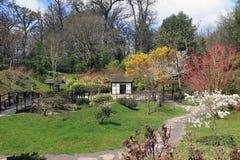 Il giardino giapponese a Kingston Lacy fotografia stock
