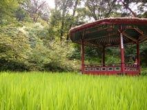 Il giardino segreto leggendario dietro Royal Palace Fotografia Stock