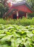 Il giardino segreto leggendario dietro Royal Palace Immagini Stock