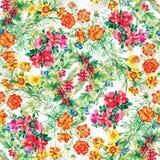 Il giardino variopinto fiorisce il modello senza cuciture Fotografie Stock Libere da Diritti