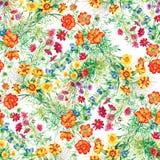 Il giardino variopinto fiorisce il modello senza cuciture Fotografia Stock