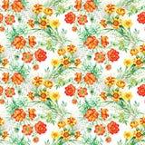 Il giardino variopinto fiorisce il modello senza cuciture Fotografie Stock